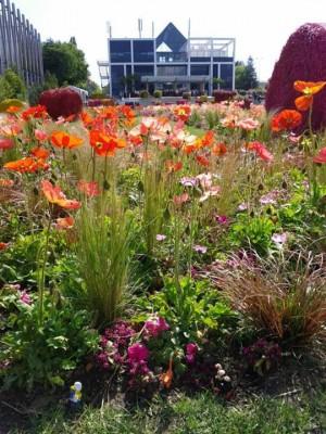 floralies